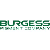 供应Burgess 煅烧高岭土