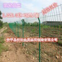 工厂现货销售双边丝护栏网  钢丝围栏 涂塑护栏网 量大从优