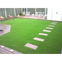假草 草坪 人造草坪 休闲草
