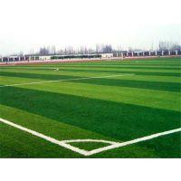 西安人造草坪足球场设计施工厂家