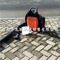 联民供应温室大棚吹雪机 道路除尘清理机价格