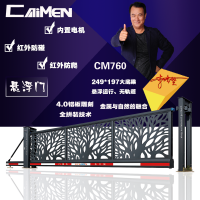 电动工业大门定制 悬浮门 大型平移门 CAIMEN