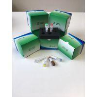 禽流感病毒通用型PCR检测试剂盒