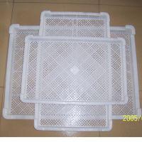 批发塑料单冻盘子 冷冻器 食品烘干盘子