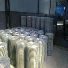 养殖用电焊网 隧道焊接网 电焊网批发