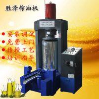 胜泽牌YZYQ立式大型商用液压榨油机 出油率高 上门安装
