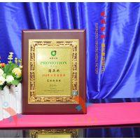 中国保险公司高级经理奖牌,晋升奖 颁奖典礼木托奖牌,