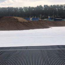 沧州车库顶阻根排水板邢台地下车库HDPE高强度排水板