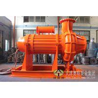 活性炭抽取使用潜水螺旋离心泵_QLX潜水排污泵