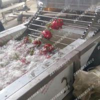 诸城全自动火龙果洗果机,华钢新款越南火龙果清洗流水线功能简介