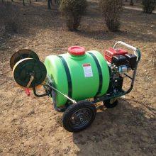全新直销公园杀虫喷雾器农用手推打药机庭院消毒喷洒机