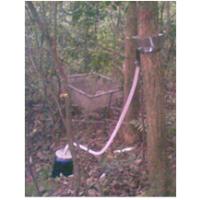 DJ-Y/H系列树干截流自动采集仪干