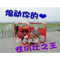 汽油高压喷雾打药机 射程远穿透力强高射程喷雾机润丰