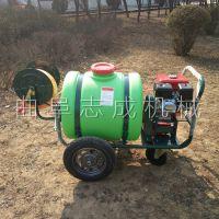 推荐手推式汽油打药机 小型绿化洒水车 160L农用高压喷雾器一机多用