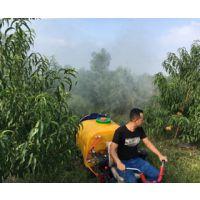 果哈哈G6C型三角履带式果园喷雾机