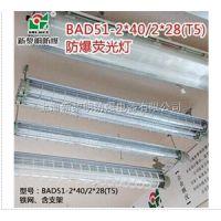 BAY51-2双管防爆荧光灯