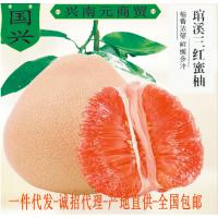 福建漳州蜜柚红心柚子新鲜水果琯溪蜜柚平和薄皮三红柚货源批发一件代发全国包邮