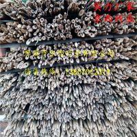 2018年新品园林用大小竹杆批发 江西发货