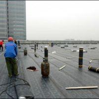 佛山市专业防水工程 伟煌防锈补漏工程部低价格,高质量。