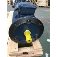 双螺杆压缩机专用三相异步电动机ZYS 280S-4-110kW SF=1.2