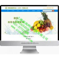 上海网站建设公司有哪些?哪家做网站技术好?