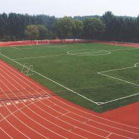 学校运动场工程复合型塑胶跑道施工环保耐磨塑胶跑道施工