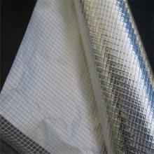 防尘帘透明网格布 墙体防裂网 网格布质量标准