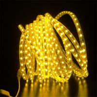 60珠防水高压5050LED贴片灯带 柔性 软灯条220v厂家批发双排灯带