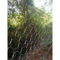 赵发绿化种植防护网.山区耐腐蚀网.工艺边坡防护用网