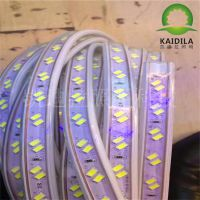 供应led高压灯带5730高亮120珠-斜双排白富美一手货源