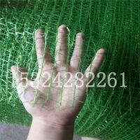菏泽市批发绿色两针 盖土网