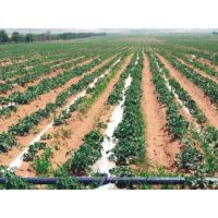 PE灌溉管_农业排灌用管_地埋农田灌溉管