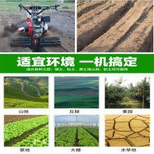 大葱大姜种植设备田园管理机 多用途小型新起垄培土机