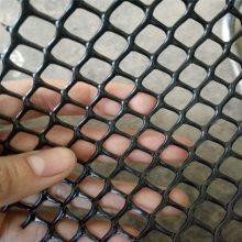雏鸡养殖网 散养鸡网围栏价格 池塘养殖网