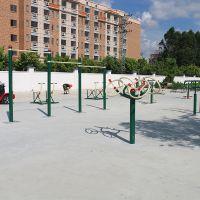江门双位钟摆器锻炼方法 公园组合健身器材配套 健身器材114管批发