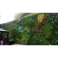 西安立体植物墙|立体绿植墙|西安垂直植物墙制作-金森造景