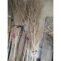 金竹牌轻便省力.牢固赖用的环卫竹扫帚.源于精选的老毛竹枝,精细的加工,先进技术。