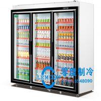零度供应双门立式冷藏展示柜,冰冻冷藏柜