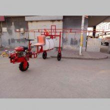 温县电动果树杀虫喷药机 启航牌汽油自走式蔬菜打药机 大葱除草喷雾器厂家