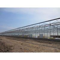 智能温室建造 玻璃大棚价格-山东千汇农业