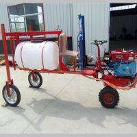 手推式果园除草打药机 新型农药喷雾器 苹果园机械迷雾机