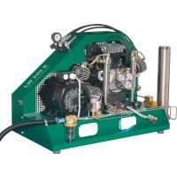 德国LW 消防空呼器充填泵 高压压缩机 LW450