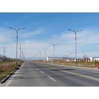 惠州厂家直销LED路灯 江门10米12米双臂路灯 科尼照明玉兰灯