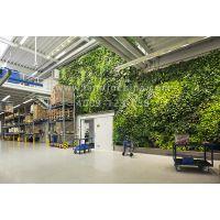 植物墙可以装在个人家庭里吗?