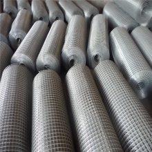 PVC涂塑电焊网 电焊网 焊片供应商