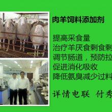 养羊益生菌的正规厂家供应牛羊益生菌