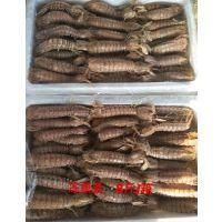 皮皮虾我们走 虾姑肉 熟冻琵琶虾肉 爬虾肉货源