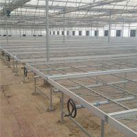 安平增茂苗床 大棚移动育苗网规格 温室苗床产品规格定做