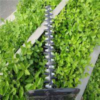 单人手持绿化修剪机 园林盆景造型修剪机 润华汽油绿篱机