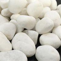 诚鑫厂家供应水处理垫层鹅卵石滤料 污水净化鹅卵石